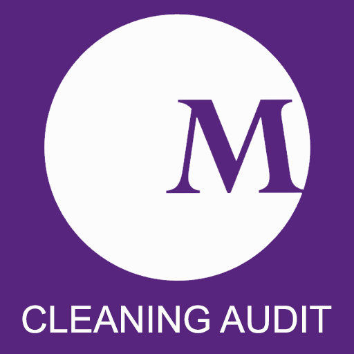 Cleaning Audit
